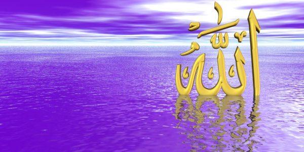 النبي الرياضي صلى الله عليه وسلم